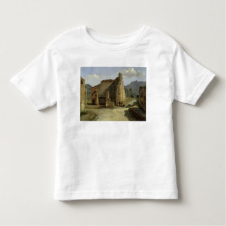 The Forum of Pompeii T Shirt
