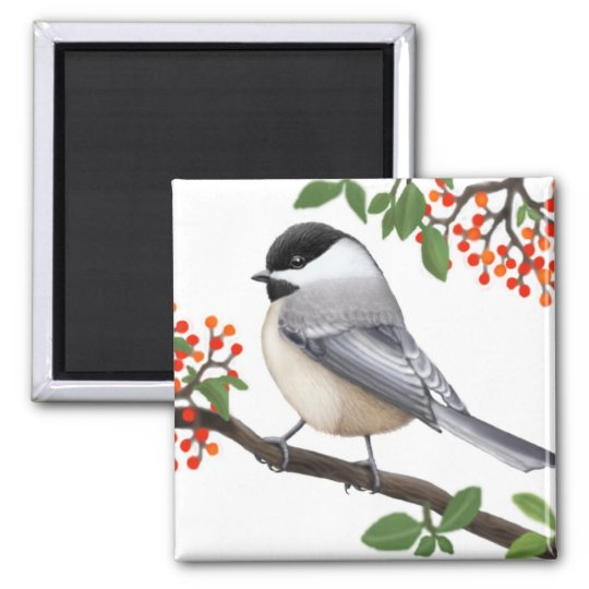 The Friendly Black Capped Chickadee Bird Magnet