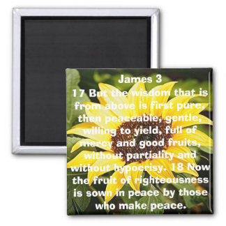 the fruit of righteousness bible verse sunflower square magnet
