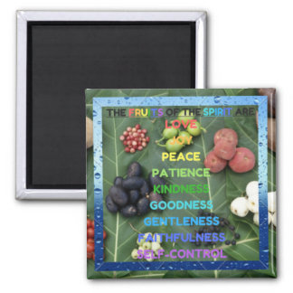 The Fruits of the Holy Spirit Magnet! Square Magnet