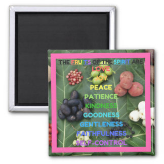 The Fruits of the Spirit (Design 11 - Pink) Square Magnet