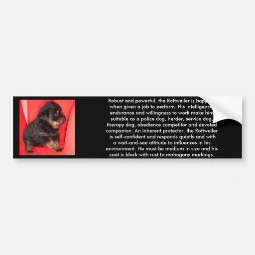 The Fur Ball Rottweiler Bumper Stickers