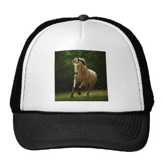 The Gallop Mesh Hats