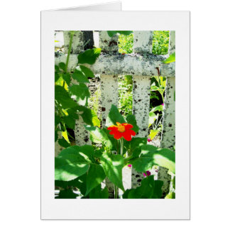 The Garden Fence Note Card