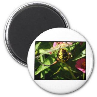 The Garden Spider 6 Cm Round Magnet