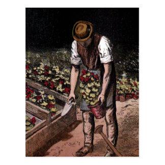 """""""The Gardener"""" Vintage Illustration Postcard"""