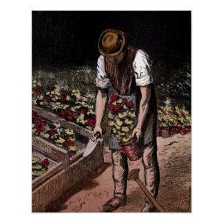 """The Gardener"" Vintage Illustration Poster"