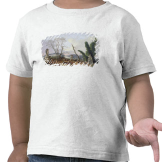 The Gardens of Versailles T-shirts