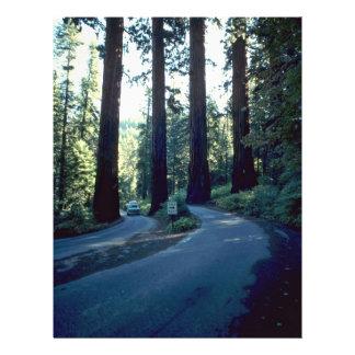 The Gateway Of Nature 21.5 Cm X 28 Cm Flyer