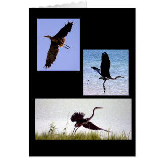 The Gift of Flight Notecard Note Card