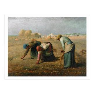 The Gleaners, 1857 Postcard