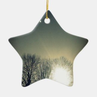 The glow ceramic star decoration