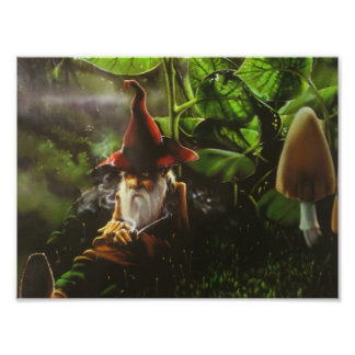 the gnome poster