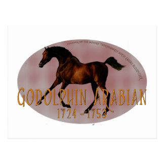 The Godolphin Arabian Postcard