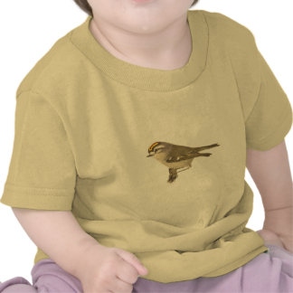 The Golden-crested Kinglet Regulus satrapa Tshirts