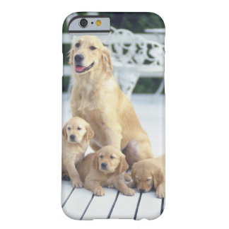 The Golden Retriever is a relatively modern and Barely There iPhone 6 Case