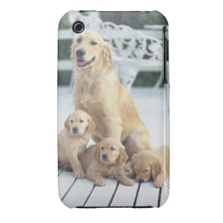 The Golden Retriever is a relatively modern and Case-Mate iPhone 3 Cases