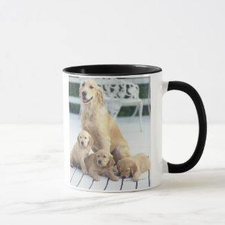 The Golden Retriever is a relatively modern and Mug