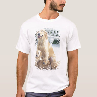 The Golden Retriever is a relatively modern and T-Shirt