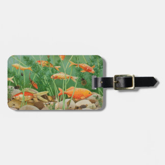 The Golden Touch 2011 Luggage Tag