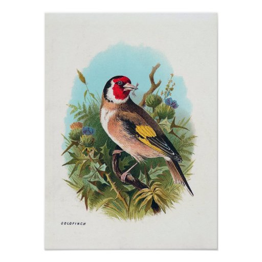"""The Goldfinch"" Posters"