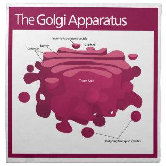 The Golgi apparatus Golgi complex Diagram Cloth Napkins