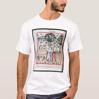 The Grape Harvest, 13th century T-Shirt