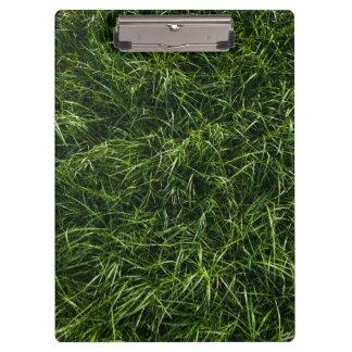The Grass is Always Greener Clipboard