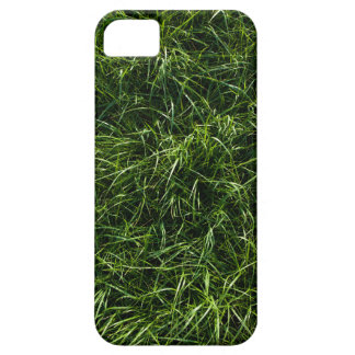 The Grass is Always Greener iPhone 5/5S Case
