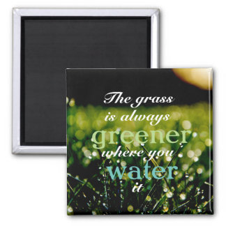 The grass is always greener where you water it magnet