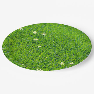 The grass is greener paper plates