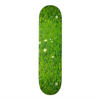 The Grass is Greener Skate Board Decks