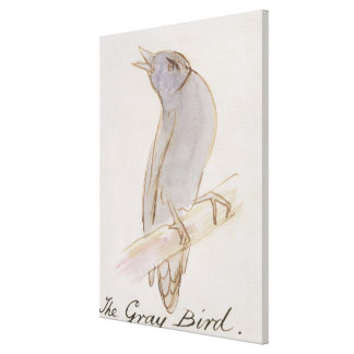 The Gray Bird, from 'Sixteen Drawings of Comic Bir Canvas Print