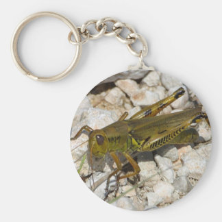 the Great Grasshopper  ! Key Ring
