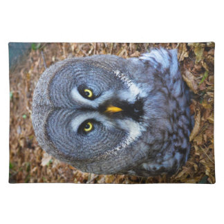 The Great Grey Owl Strix Nebulosa Lapland Owl Place Mats