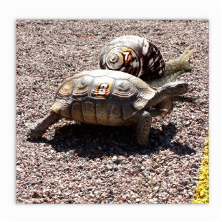 The Great Turtle & Snail Race Standing Photo Sculpture