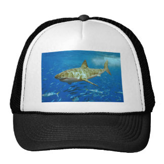 The Great White Shark Carcharodon Carcharias Mesh Hats