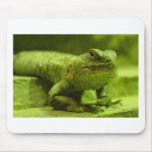 The Green Lizard Mouse Pads