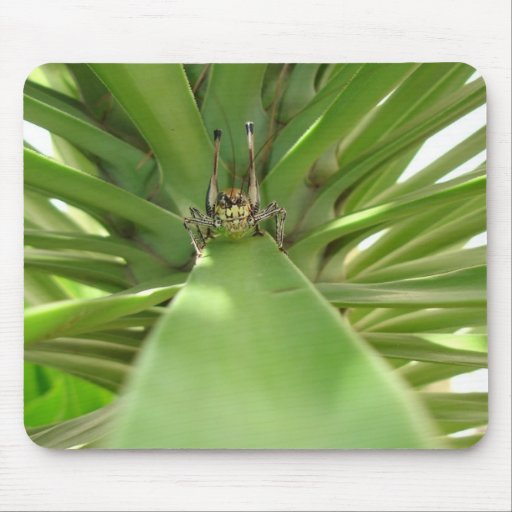 The Green Mile Mouse Pad
