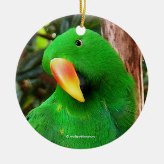 """The Green Orator"" Eclectus Parrot Christmas Ornament"