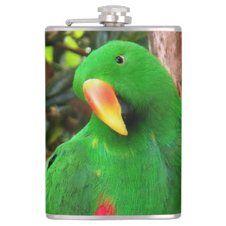 """""""The Green Orator"""" Eclectus Parrot Flasks"""