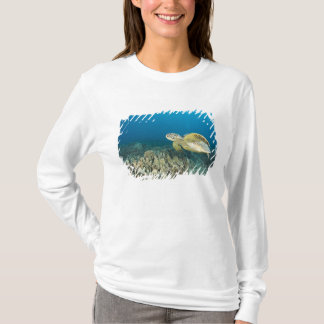 The Green Sea Turtle, (Chelonia mydas), is the 3 T-Shirt