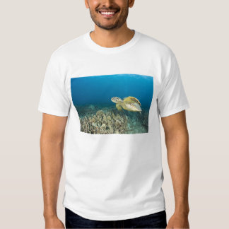 The Green Sea Turtle, (Chelonia mydas), is the 3 T-shirts