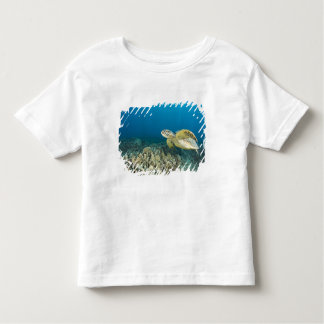 The Green Sea Turtle, (Chelonia mydas), is the 3 Toddler T-Shirt