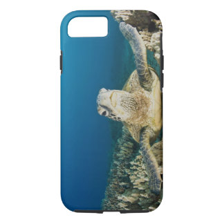 The Green Sea Turtle, (Chelonia mydas), is the iPhone 8/7 Case