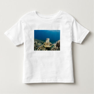 The Green Sea Turtle, (Chelonia mydas), is the T-shirts