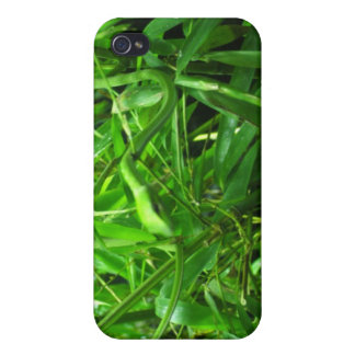 The Green Snake iPhone 4 Covers