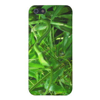 The Green Snake iPhone 5 Covers