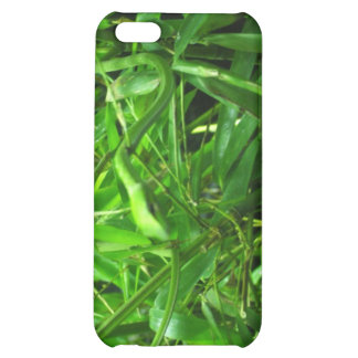 The Green Snake iPhone 5C Cases