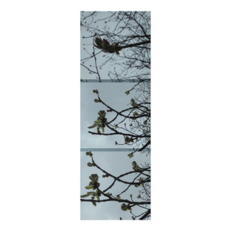 The greens at the tip of twig photo art
